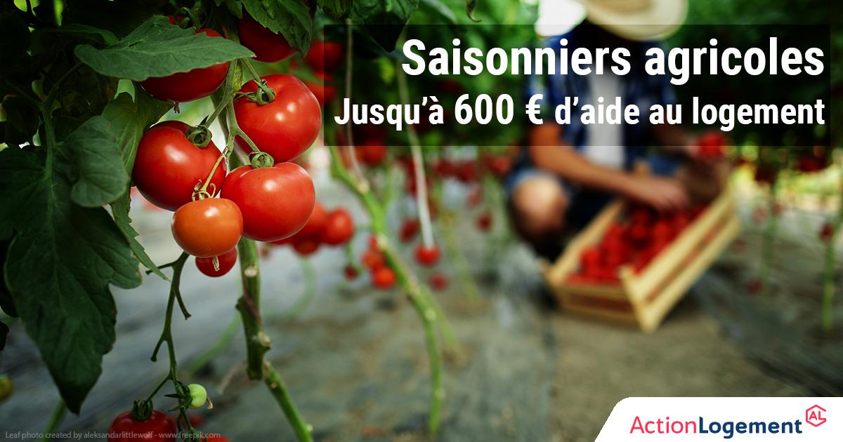 Aide exceptionnelle au logement des saisonniers agricoles